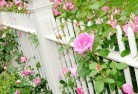 Addington Garden fencing 33